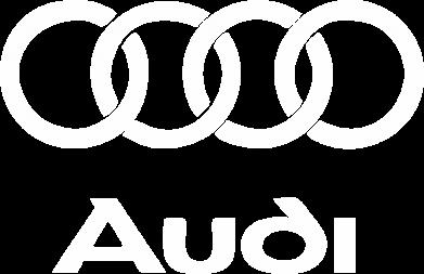 Принт Кепка Audi - FatLine