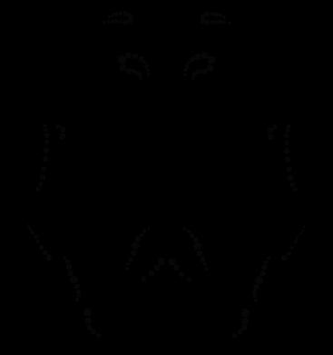 Принт Футболка с длинным рукавом Штурмовик Арт - FatLine