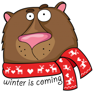 Принт Реглан Winter is coming Bear - FatLine
