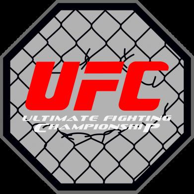Принт Женская майка UFC Cage - FatLine
