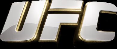 Принт Мужская толстовка на молнии UFC 3D - FatLine