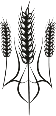 Принт Мужская майка Norfin - FatLine