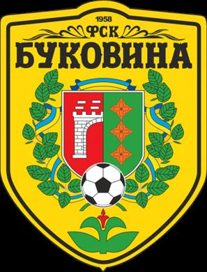Принт Футболка ФК Буковина Черновцы - FatLine