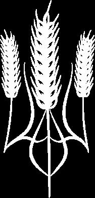 Принт Камуфляжная футболка Norfin - FatLine