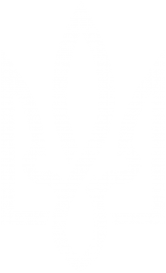 Принт Женские шорты Герб 2 - FatLine