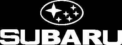 Принт Чоловічі шорти Subaru - FatLine