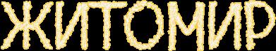 Принт Женская футболка Квітучий Житомир - FatLine