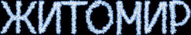 Принт Женская футболка с V-образным вырезом Квітучий Житомир - FatLine