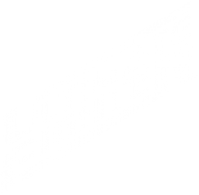 Принт Футболка Поло The Ultimate Fighter 2 - FatLine