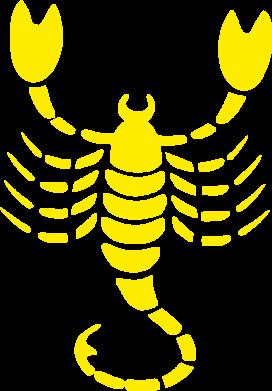 Принт скорпион - FatLine