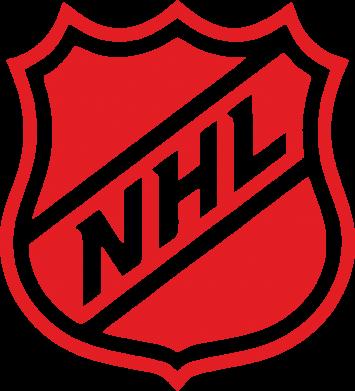 Принт Футболка Поло NHL - FatLine