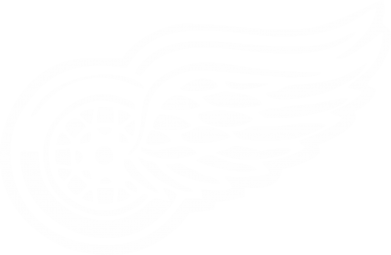 Принт Кепка Red Wings - FatLine