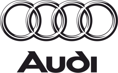 ����� ����� Audi Small - FatLine