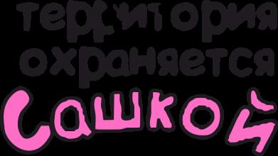 Принт Сумка Территория охраняется Сашкой - FatLine