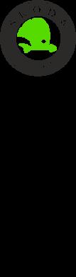 Принт Подушка Skoda Octavia - FatLine
