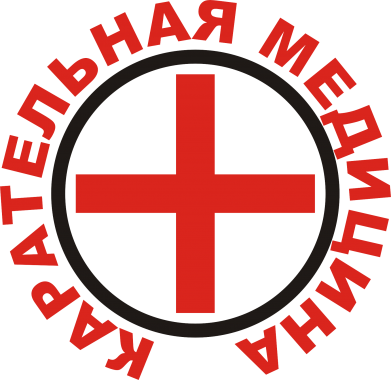 Принт Детская футболка Карательная медицина лого - FatLine