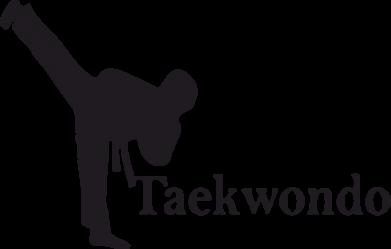 Принт Мужская футболка  с V-образным вырезом Taekwondo - FatLine