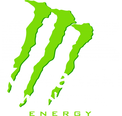 Принт Реглан Kawasaki Monster Energy - FatLine