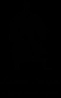 Принт Камуфляжная футболка Береженого Бог береже, а козака шабля стереже - FatLine