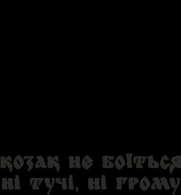 Принт Мужская футболка  с V-образным вырезом Козак не боїться ні тучи, ні грому (з гербом) - FatLine