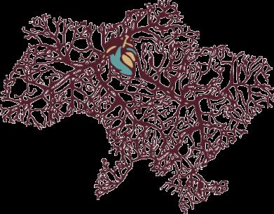 Принт Штаны Карта України з серцем - FatLine