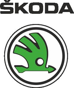 Принт Кепка-тракер Skoda - FatLine
