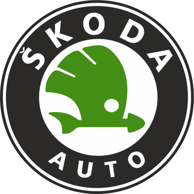 Принт кепка Skoda Auto - FatLine