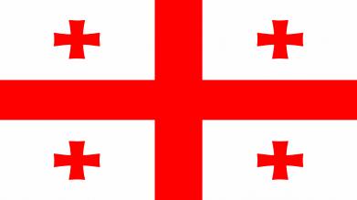 Принт Камуфляжная футболка Грузия - FatLine