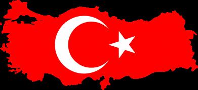 Принт Женская футболка с V-образным вырезом Turkey - FatLine