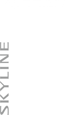����� ������� �������� ���� Nissan Slyline - FatLine