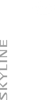 Принт Мужская футболка  с V-образным вырезом Skyline Logo (Nissan) - FatLine