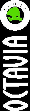 Принт Тельняшка с длинным рукавом Skoda Octavia - FatLine