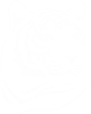 Принт Футболка Поло Морда тигра - FatLine