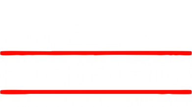 ����� ������� ����� EMINEM live from New York City - FatLine