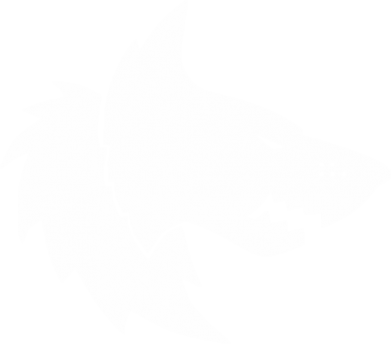 ����� ������� ��������� �� ������ Warhammer Space Wolf - FatLine
