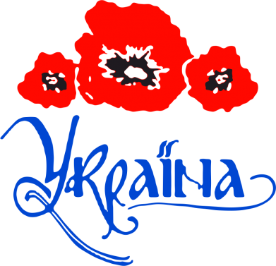 Принт Шапка Квітуча Україна - FatLine
