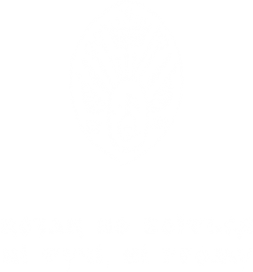Принт Тельняшка с длинным рукавом Козак не боїться ні тучи, ні грому (з гербом) - FatLine