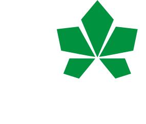 Принт Мужские трусы I love Kiev - с листиком - FatLine