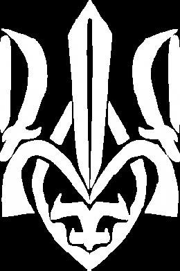 Принт Тельняшка с длинным рукавом Гарний герб України - FatLine