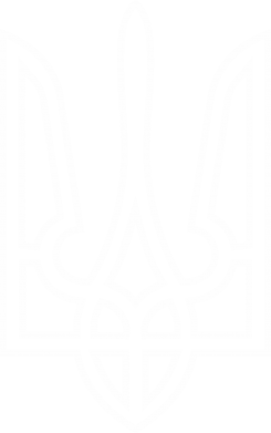 Принт Мужские шорты Герб України (полий) - FatLine