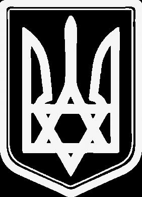 Принт Женская футболка с V-образным вырезом Звезда Давида+герб - FatLine