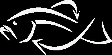 Принт Мужские шорты Силуэт рыбы - FatLine