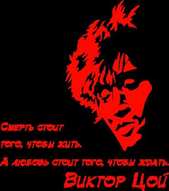 Принт Подушка Виктор Цой - FatLine