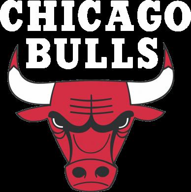 Принт Женская футболка с V-образным вырезом Chicago Bulls Classic - FatLine