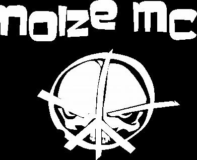 Принт Мужская толстовка на молнии Noize MC Logo - FatLine
