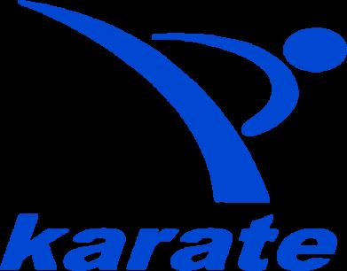 Принт Мужские трусы Karate - FatLine