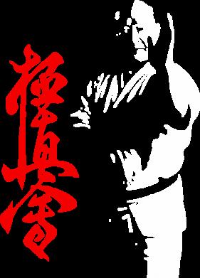 Принт Мужская толстовка на молнии Kyokushin Kanku Master - FatLine