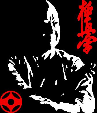 Принт Тельняшка с длинным рукавом Kyokushin Kanku logo - FatLine