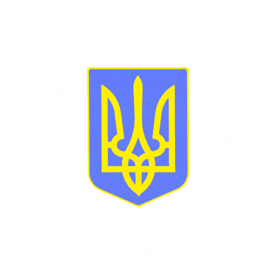 Принт Футболка с длинным рукавом МВС України - FatLine