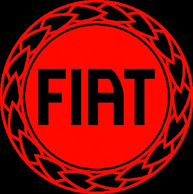 Принт Реглан Fiat logo - FatLine
